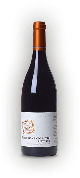 Bourgogne Pinot Noir Côtes d'Or